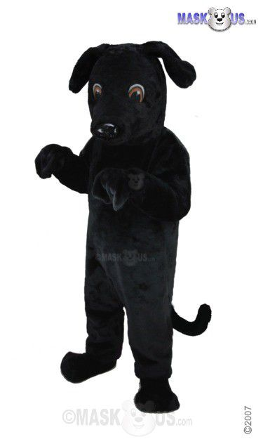 Black Lab Mascot Costume T0091