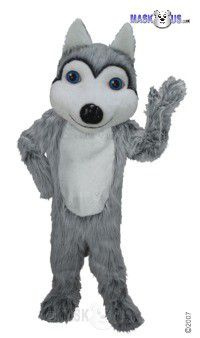 Friendly Husky Mascot Costume T0078
